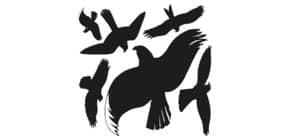 Fensterbild Raubvogel 6 Stück sortiert schwarz ZWECKFORM 4485 verschiedene Größen Produktbild