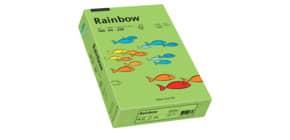 Kopierpapier A4 160g grün RAINBOW 88042659 250 Blatt Produktbild