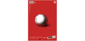 TuscheBlatt 21x29,7cm 10 Blatt Edition DÜRER 055493000 200g Austria Produktbild