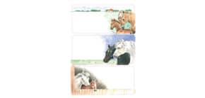Schuletikette Pferde Produktbild