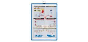 Prospektblatthalter A4hoch blau TARIFOLD TA184501 +Öse Produktbild