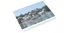 Schreibunterlage Motiv Pferde LÄUFER 30865 40x53cm Produktbild