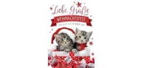 D.T.Weihnachtskarten 22-1020   Bild Produktbild